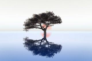 grupo-crecimiento-personal-by-dan