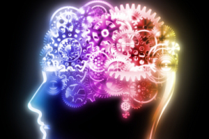 neuropsicologc3ada-mr-lightman-1