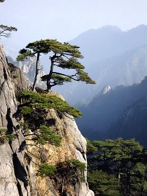 Imagen de montañas de Huangshan